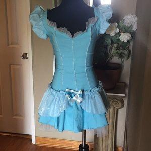 Halloween Disney Cinderella Adult Costume